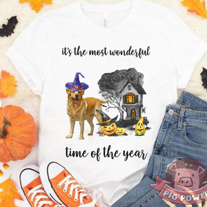Dog Halloween Shirt It's The Most Wonderful Time