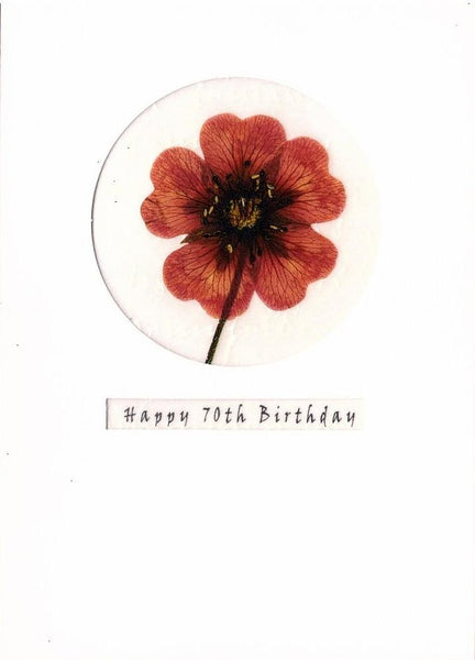 Age 70 - 70th Birthday - Pressed Flower
