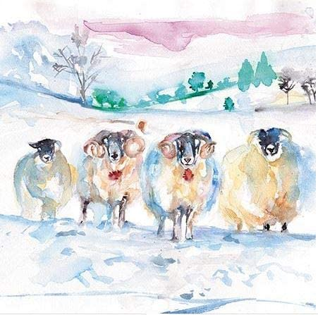 Charity Christmas Cards - Pack of 8 - Winter Rams