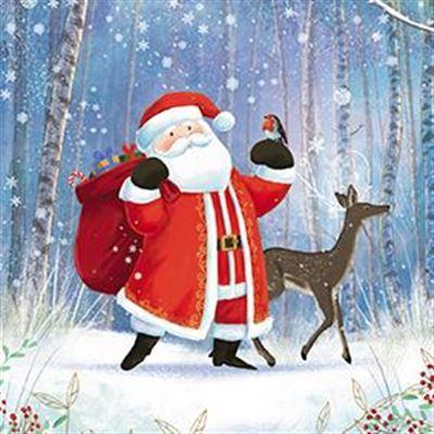Charity Christmas Cards - Pack of 8 - Santa and Friends