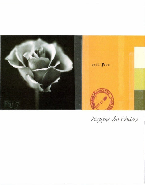 Birthday Card - Wild Rose