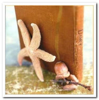 Blank card - Starfish, Acorn and Book