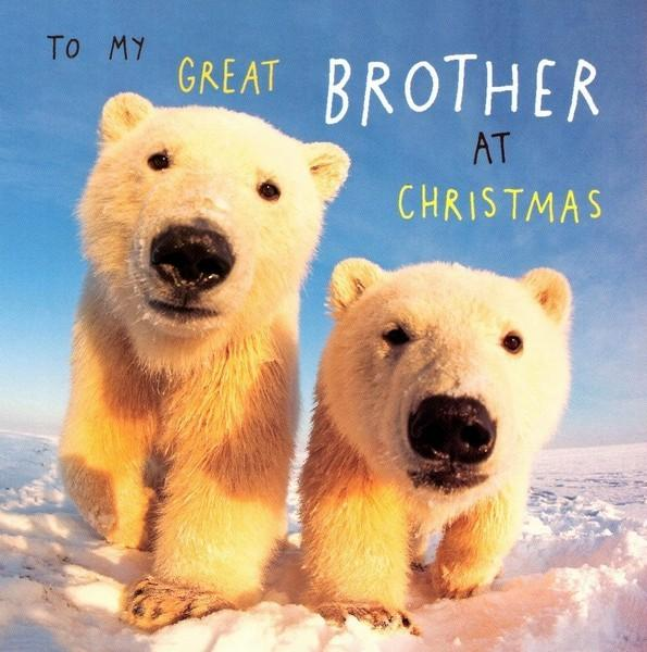 Christmas Card - Brother - Curious Young Polar Bears