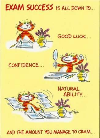 Good Luck Card - Exams - Confidence Cat