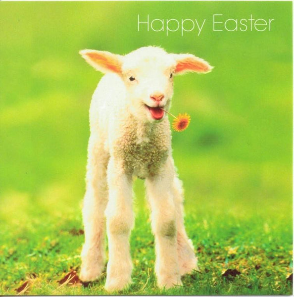 Easter Cards - Pack of 5 - Easter Gift