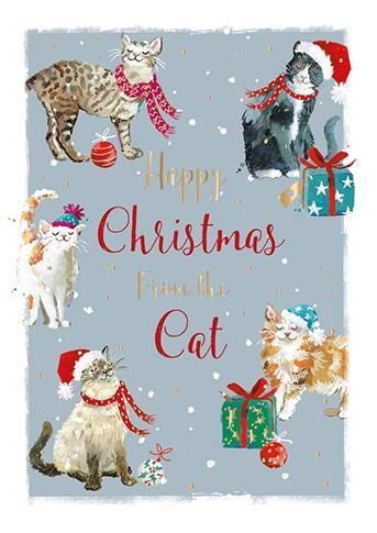 Christmas Card - From The Cat - Purrfect Christmas