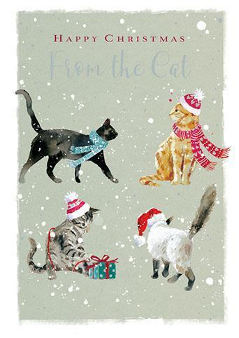 Christmas Card - From The Cat - Christmas Cats