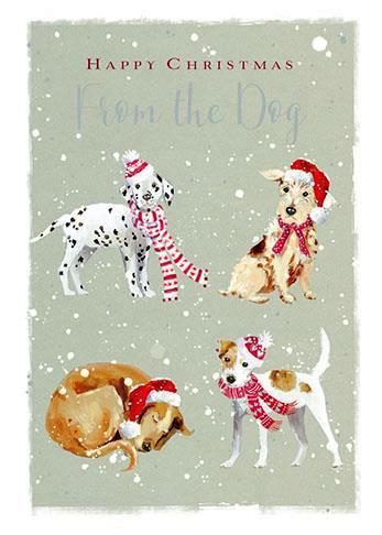 Christmas Card - From The Dog - Christmas Dogs