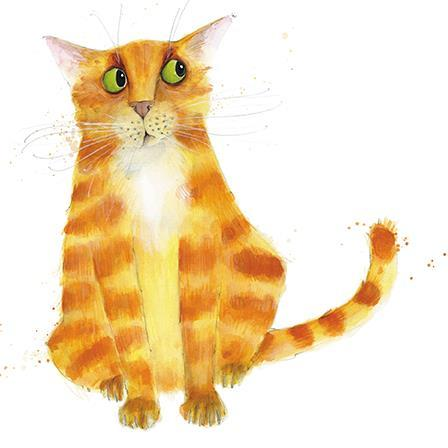 Blank Card - Ginger Cat.