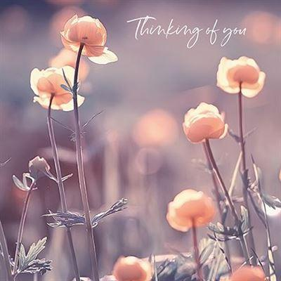 Thinking of You Card - Sunlit Flowers