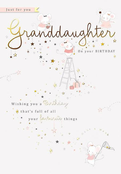 Granddaughter Birthday - Favourite Things