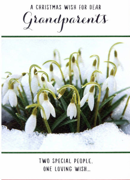 Christmas Card - Grandparents - Snowdrops