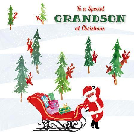 Christmas Card - Grandson - Hide & Seek