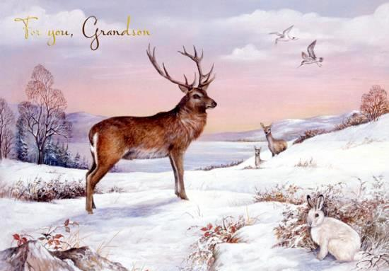 Christmas Card - Grandson - Stag & Winter Hare