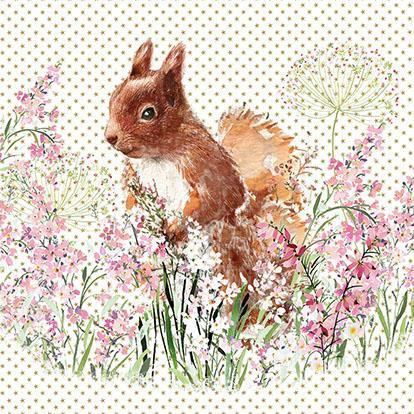 Birthday Card - Red Squirrel