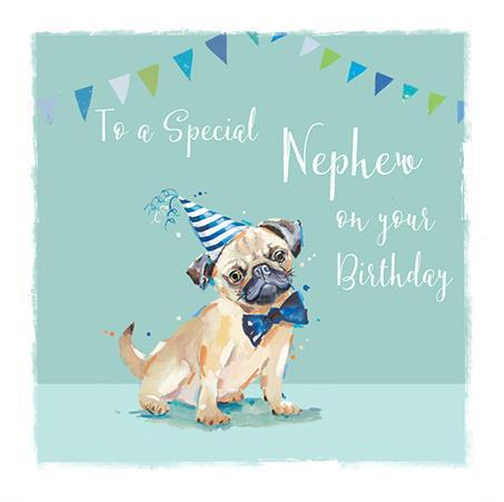 Nephew Birthday - Pugs And Kisses