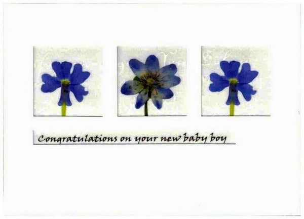 New Baby Card - Baby Boy - Iris and Pansy