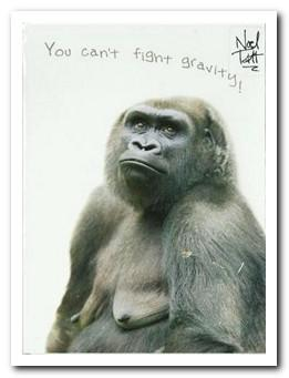 Humour Card - You can't fight gravity!