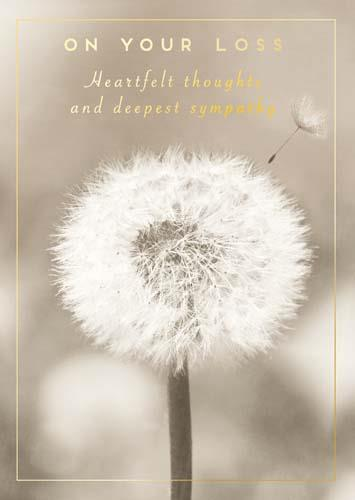 Sympathy Card - Dandelion On Your Loss
