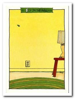 Humour Card - Fly on the wall