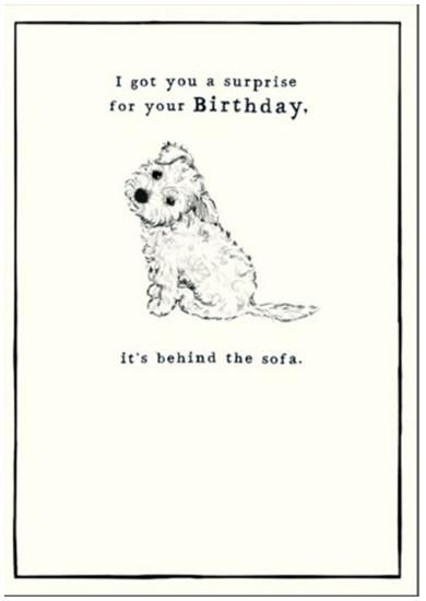 Birthday Card - Behind The Sofa