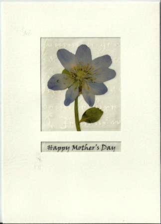 Mother's Day Card - Pale Blue Flower