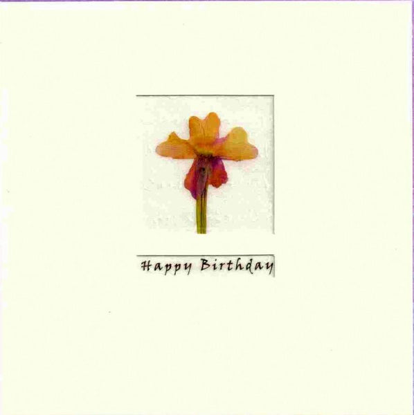 Birthday Card - Alstroemeria