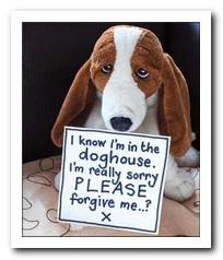 Sorry Card - I know I'm in the doghouse...