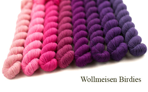 Everything you always wanted to knit about - Wollmeisen Bird
