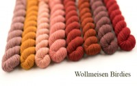 Knit, eta, pray, love - Wollmeisen Birdies