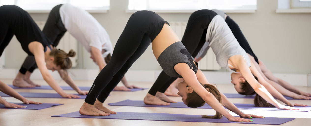 Zenzation Athletics | Yoga, Fitness, and Recovery products at discounted prices for Studio partners