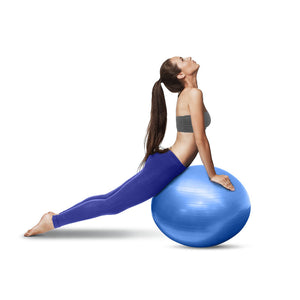 65cm Exercise Ball with Pump - BLUE