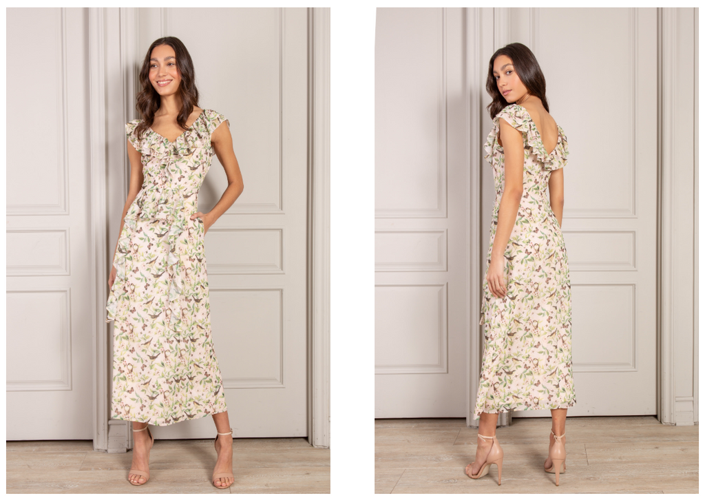 Élisabeth Maxi Dress in Pink Bird Print