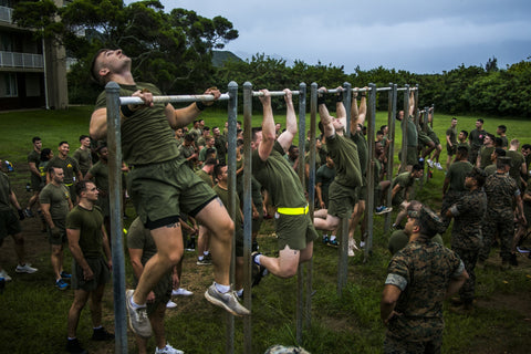 soldiers doing pull ups