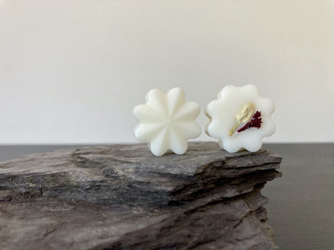 Image of Blackberry & Bay Natural Scented Soy Wax Melts