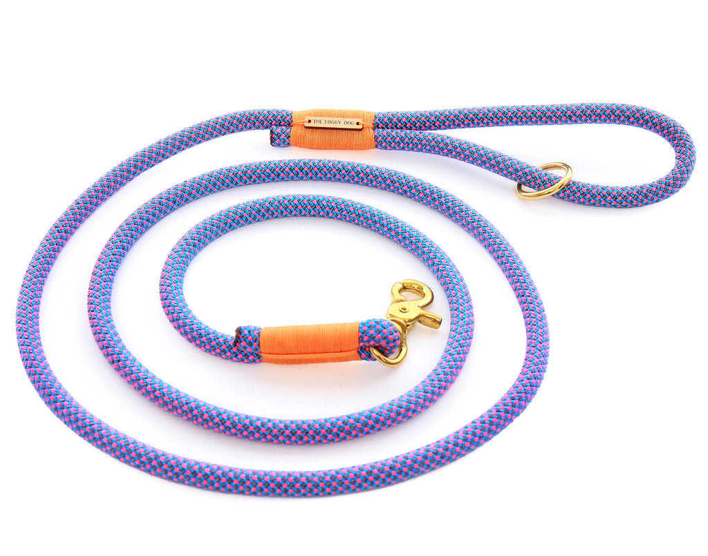 Neon Tetra Climbing Rope Dog Leash - Frank and Millie