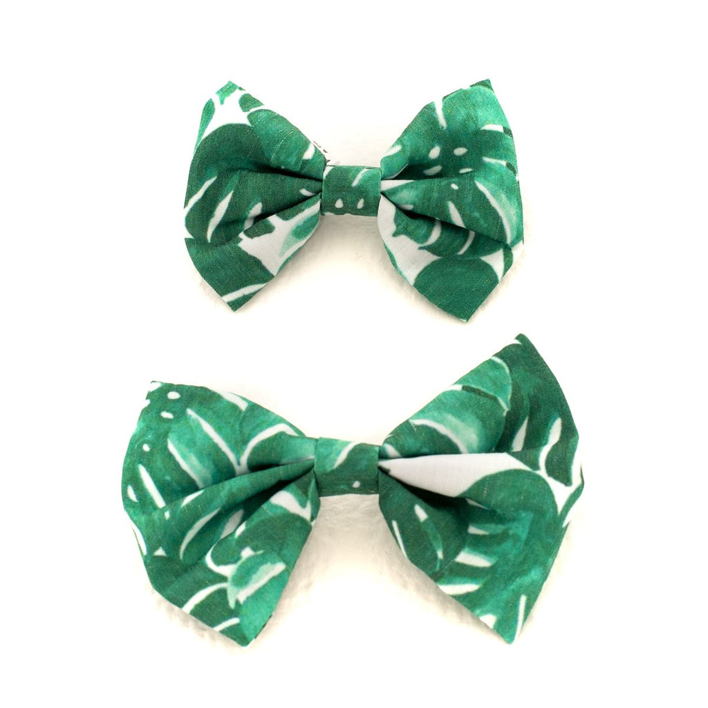 Monstera leaf bowtie - Frank and Millie