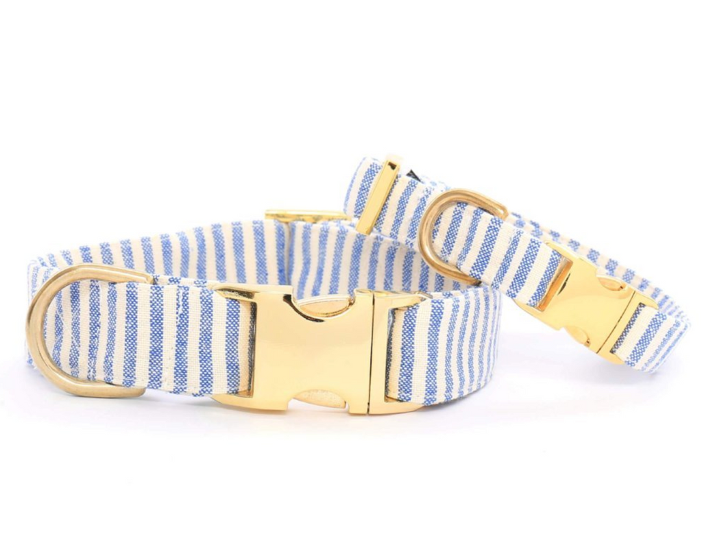French Blue Stripe Dog Collar - Frank and Millie