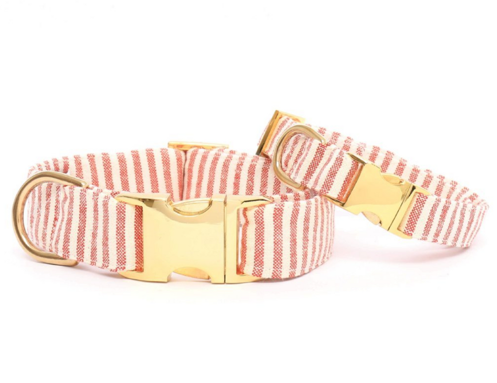 Red Stripe Dog Collar - Frank and Millie