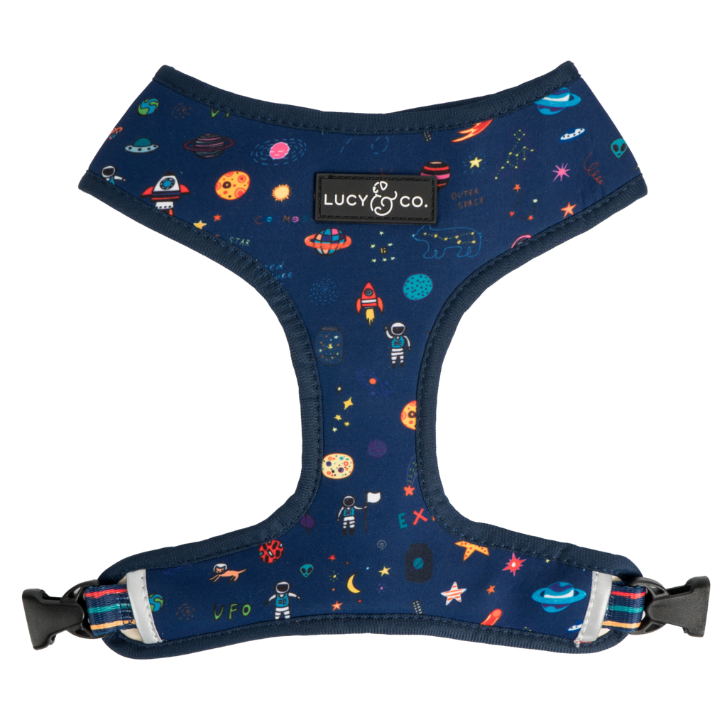 The Space Doodle Reversible Harness - Frank and Millie