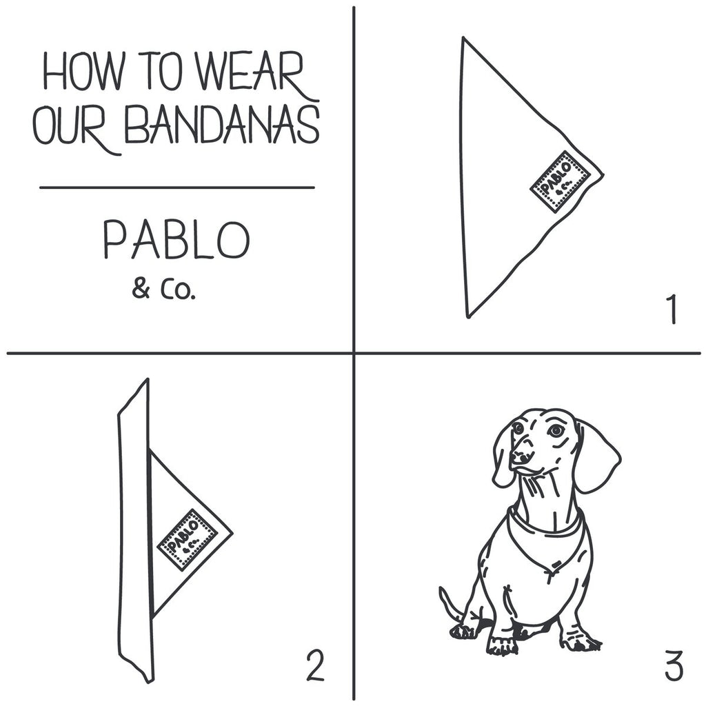 Soft Serve Bandana - Frank and Millie