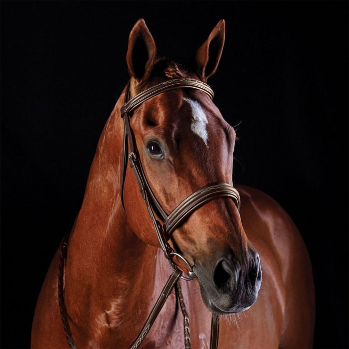 Collegiate Comfort Crown Fancy Stitched Raise Cavesson Bridle