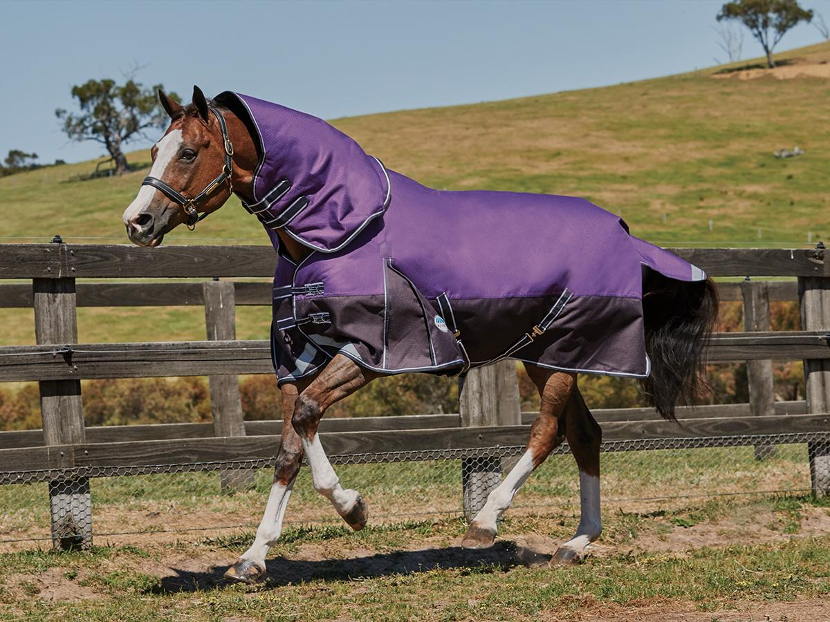 Weatherbeeta ComfiTec Detach-A-Neck Lite Turnout Sheet