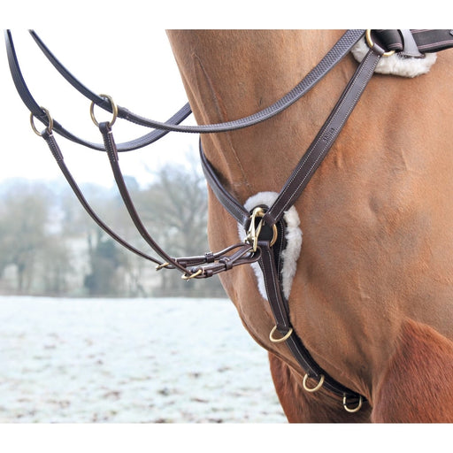 Shires Five Point Breastplate