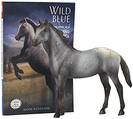 Wild Blue Book and Model Gift Set
