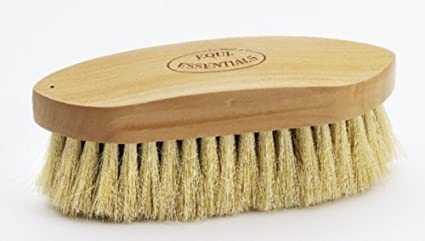 Small Wood Back Dandy Brush Tampico
