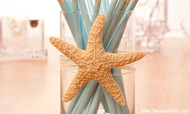 Star Fish Pencil Cup