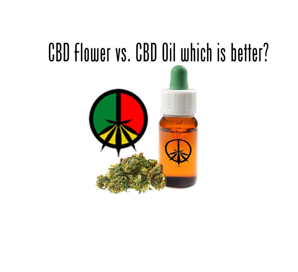 CBD Flower vs. CBD Oil which is better?