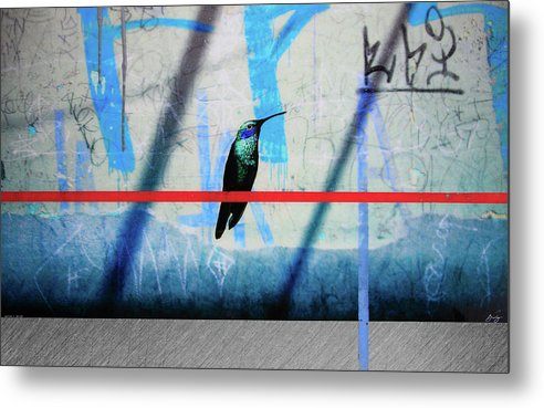 Humming Bird Grafitti - Metal Print - sevenart-studio