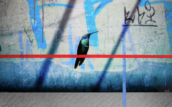 Humming Bird Grafitti - Art Print - SEVENART STUDIO